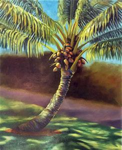 palm-tree-imp